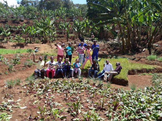 a visit to the Mlango Farm